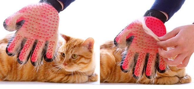 Перчатка для вычёсывания кошачей шерсти