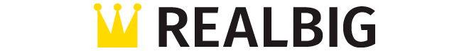 RealBig.Media: мой отзыв о бесплатном ротаторе контекстной и медийной рекламы