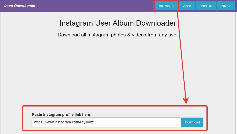 Сайт InstaDownloader